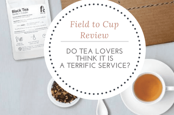 Field to Cup Review: Do Tea Lovers Think It Is A Terrific Service?
